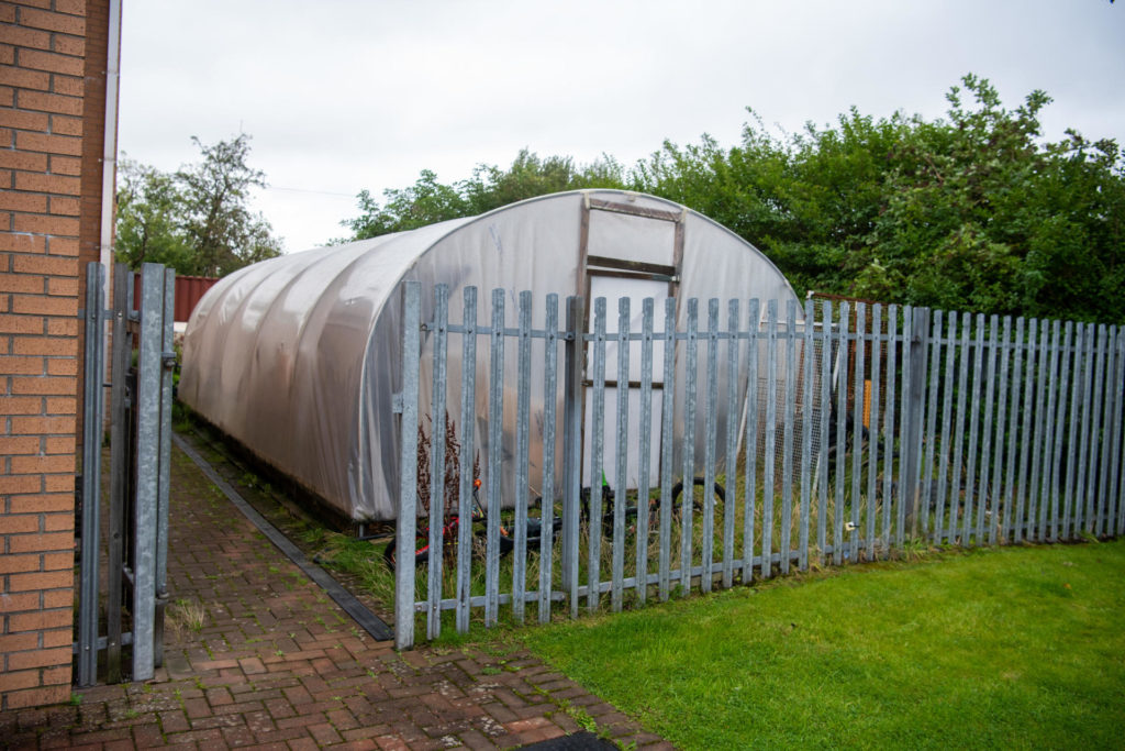 Photograph: A poly-tunnel sits alongside some overgrown hedges at the side of Centre81